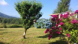 camping-arbaz-lac-d-aigubelette-savoie-2019-4